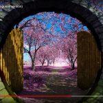 O Jardim Secreto RV